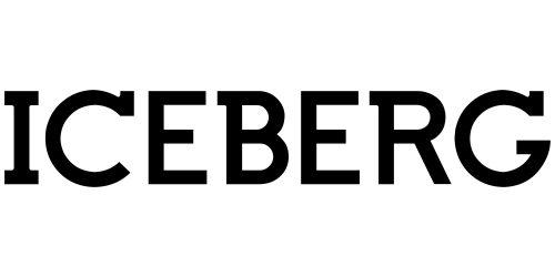 Iceberg logo 1